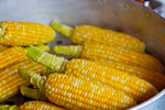 Maiskolben zum Popcorn selber machen